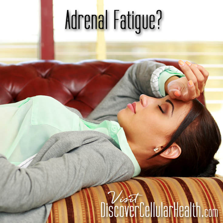 Adrenal Balance by XR Nutrition available at DiscoverCellularHealth.com