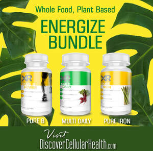 Energize Bundle - Multi Daily, Pure B Power, Pure Irona - XR Nutrition available at DiscoverCellularHealth.com